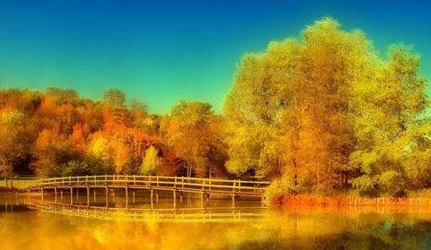 Осенний пейзаж на озере