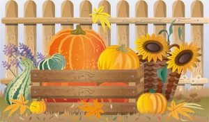 Осенний урожай иллюстрация