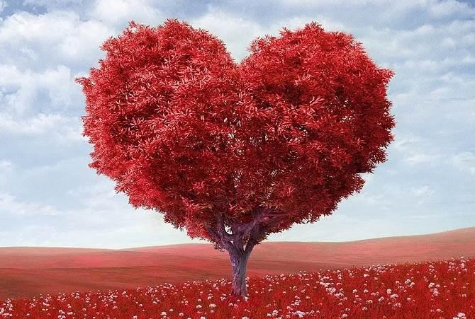 Любовь в ноябре