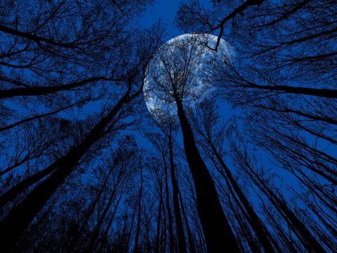 Луна в ноябре