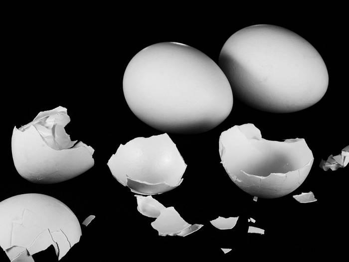 Яичная скорлупа фото