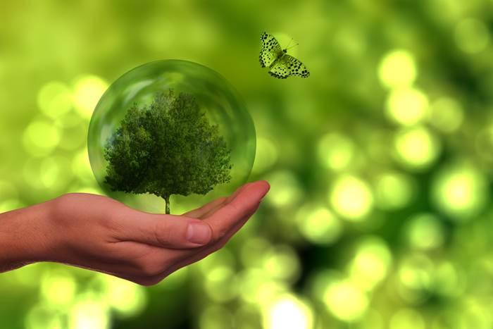 Защита природы